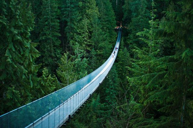 عکس طبیعت زیبا و شگفت انگیز
